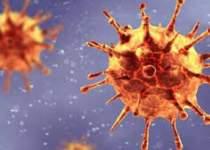 واکسن ضد کرونا   آکسفورد   نفت آنلاین