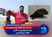 شرکت نفت و گاز اروندان   پرنده شکاری   نفت آنلاین
